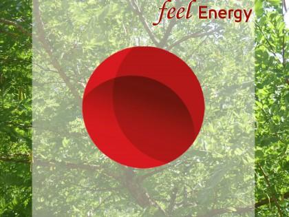 Feel Energy – Energiesensibilisierung für Mitarbeiter
